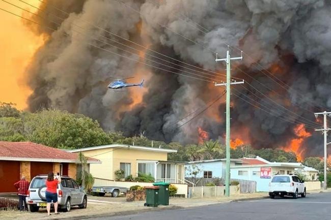 """Không Quân """"Miệt Dưới"""" và cháy rừng ở Úc - Nguyễn Hữu Thiện"""